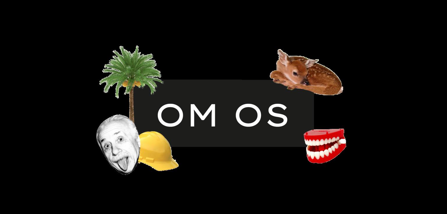 Go Zebra - Header - Om Os - iværksætteri - design - børn.