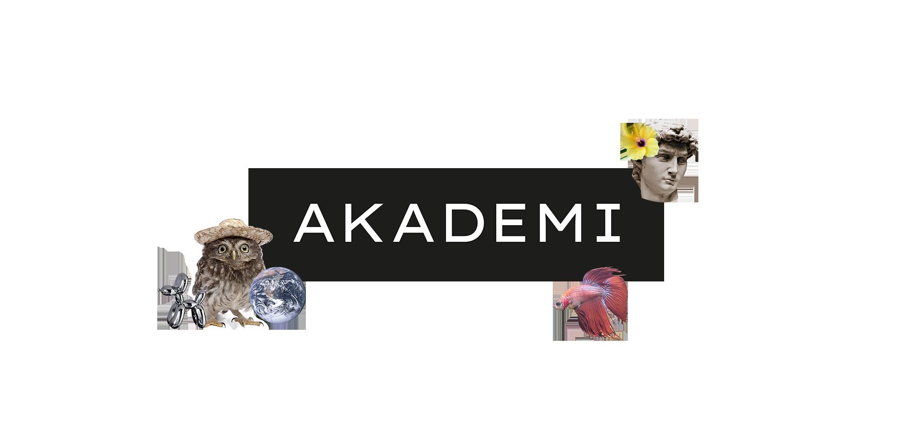 Go Zebra - Header Web - Akademi
